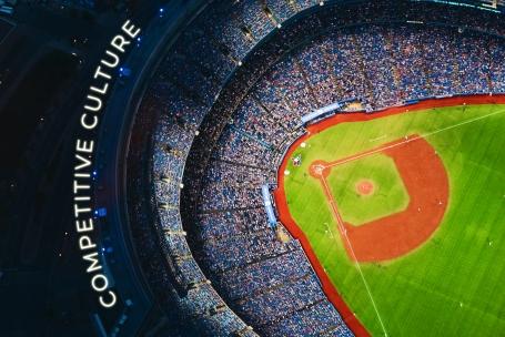 Competitive Culture Baseball Field